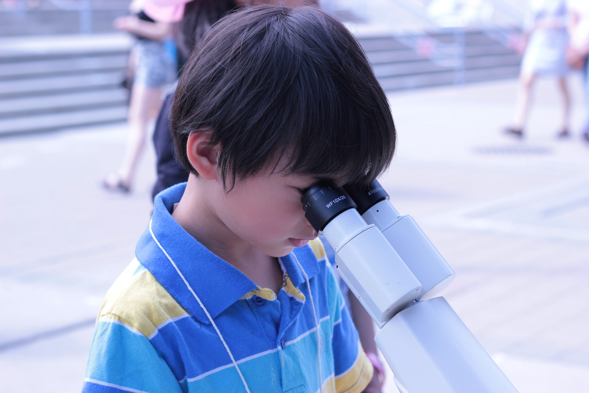 A boy examining fish larvae under a microscope