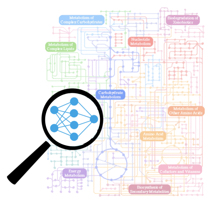 metabolomics map
