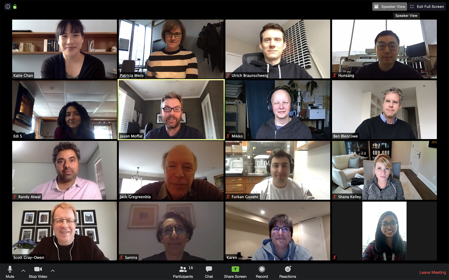 Screen shot of researchers on video call