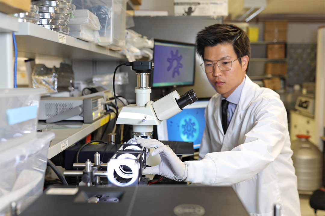 Shuailong working in the lab